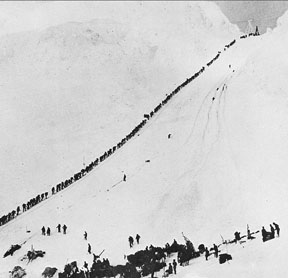 Miners climb the Chilkoot Trail
