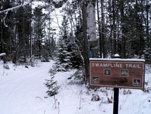 Swamp Line Trail