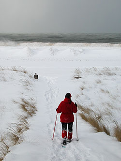 Saugatuck State Park's scenic Lake Michigan shoreline during the winter.