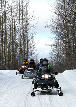 Snowmobilers following a trail in Benzie County.