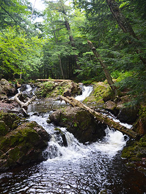 A waterfall along the Little Carp River in Porcupine Mountains Wilderness State Park.